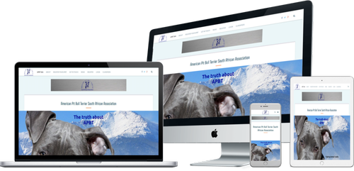 APBTSAA Responsive Website Design-Urban Solution